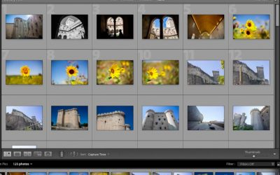 Photo Organizing and Visual Management