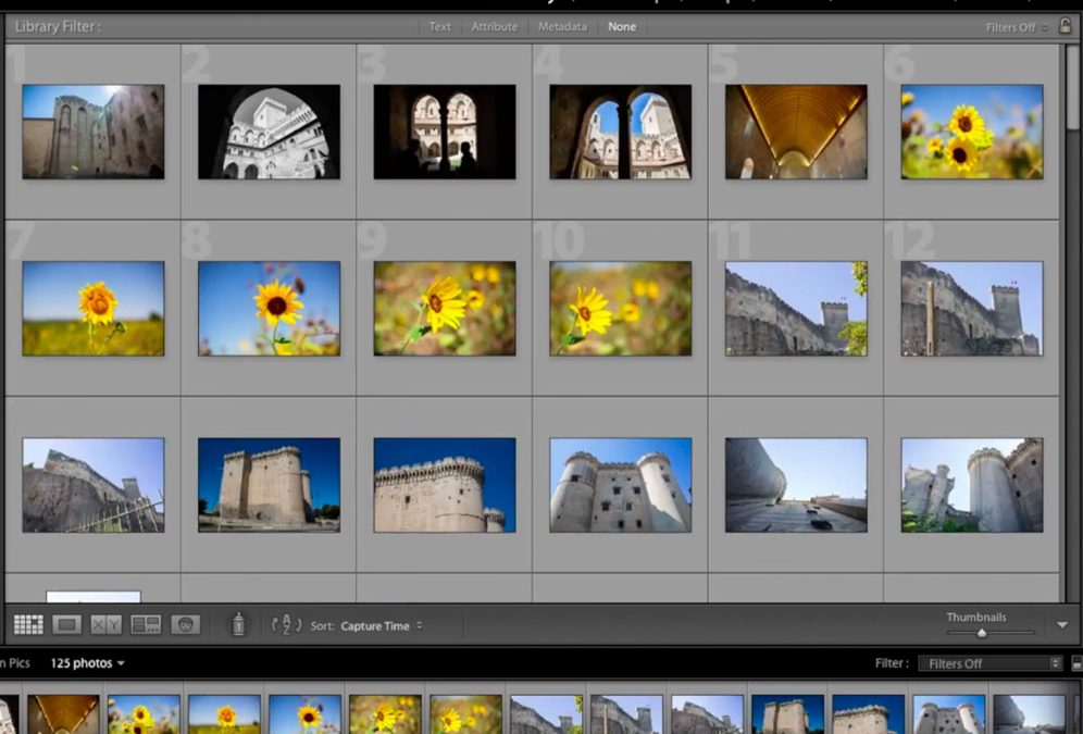 Visual Management and Photo Organizing