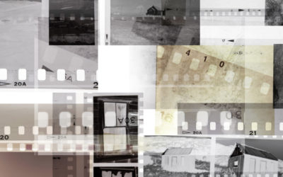 Negatives in your Photo Collection