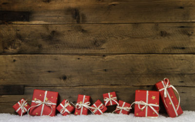 A Professional Photo Organizer Holiday Gift Guide